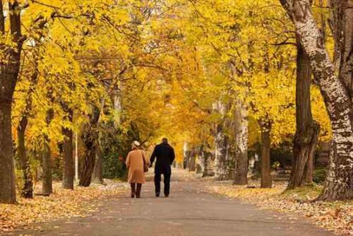 婚姻情感心理咨询:想知道彼此的关系深浅,一起吃个饭就知道了